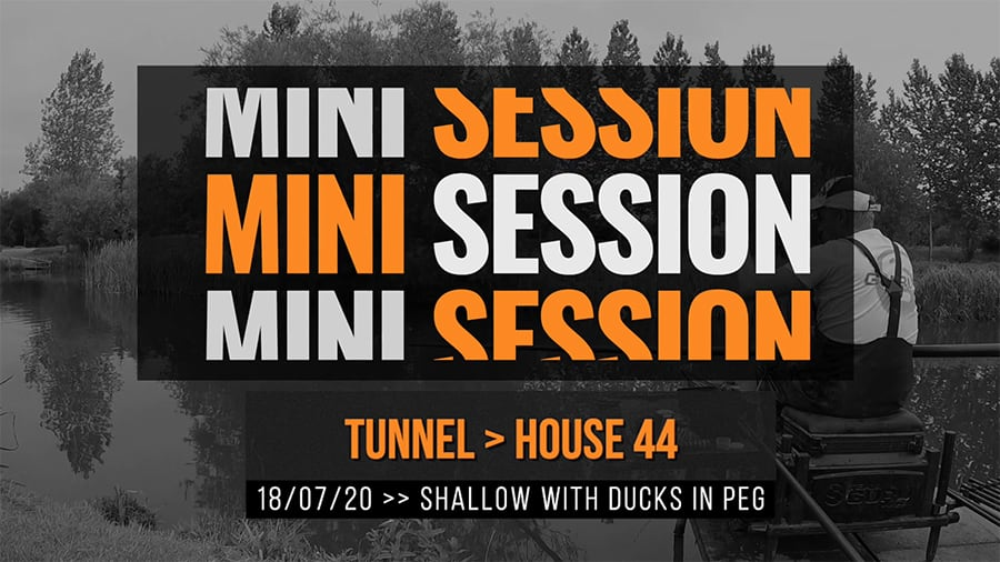 Tunnel New 44 – Shallow with ducks in peg