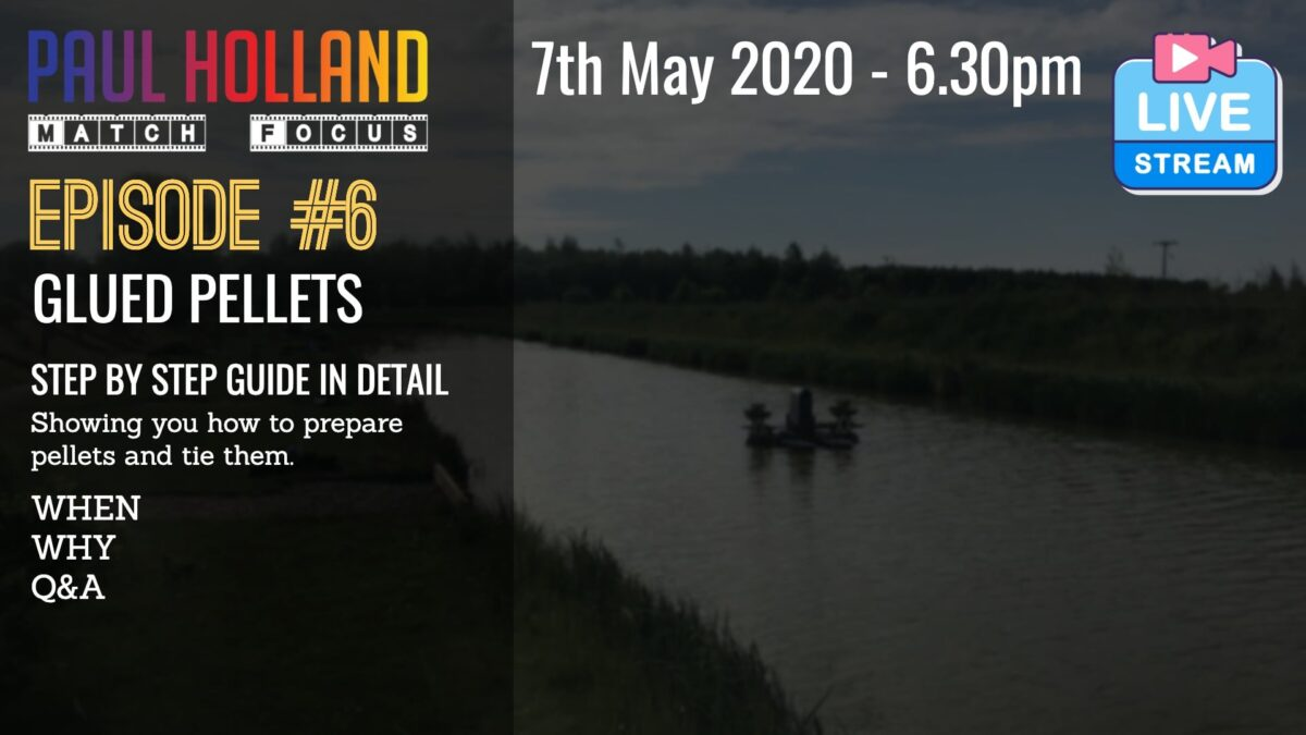 Live – Glued Pellets – 7th May 2020