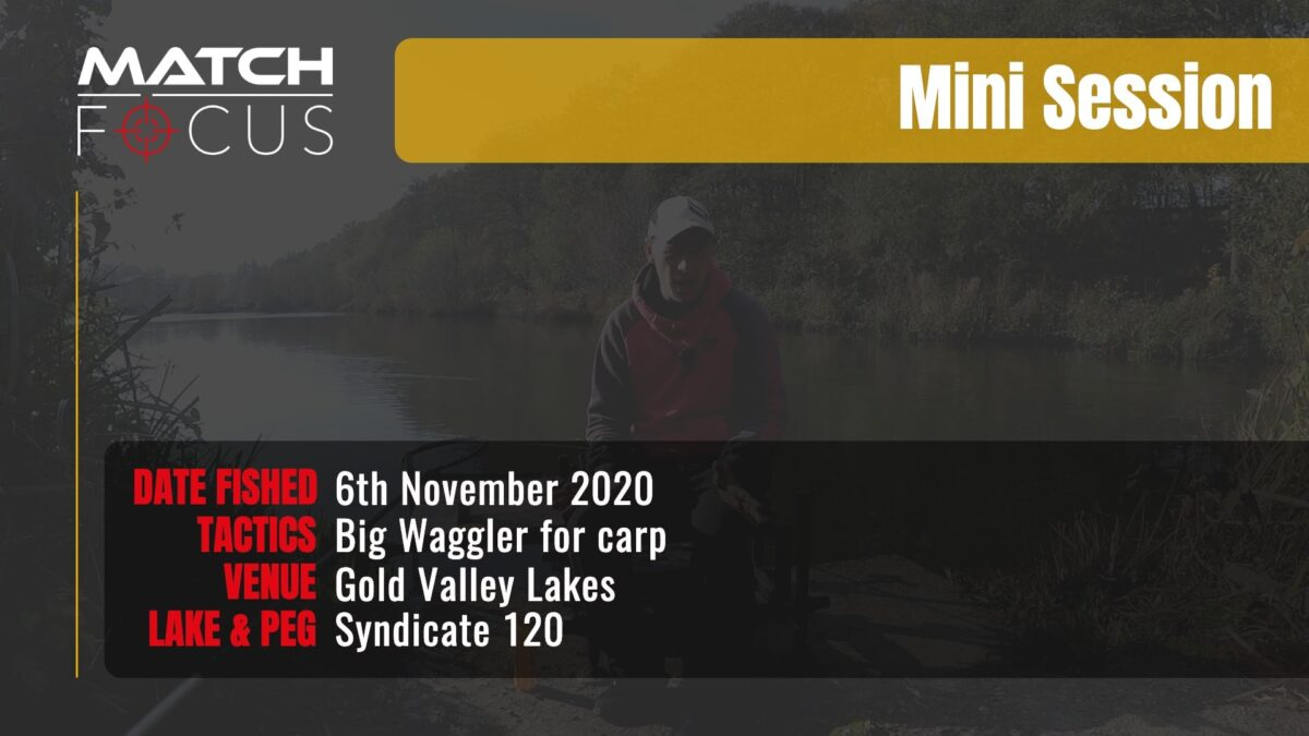 Gold Valley Syndicate 120 – Big Waggler for Carp