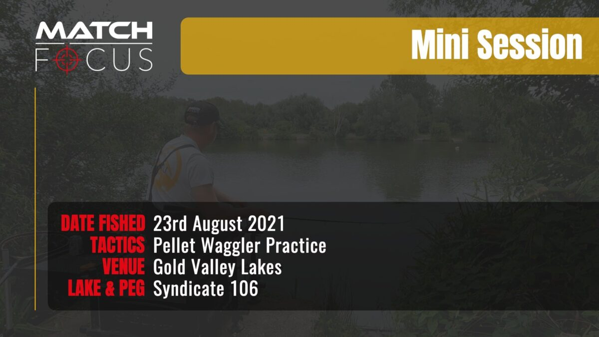 Gold Valley Syndicate 106 – Pellet Waggler Practice