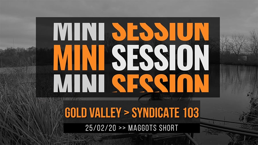 Gold Valley Syndicate 103 – Maggots Short