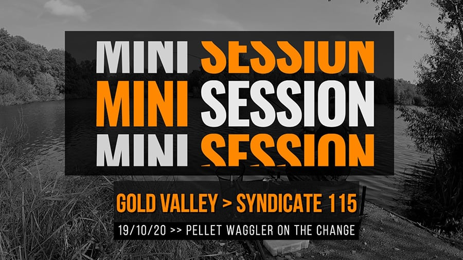 Gold Valley Syndicate 115 – Pellet Waggler on the change