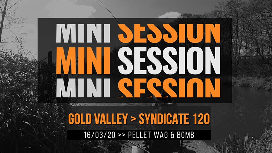 Gold Valley Syndicate 120 – Pellet Wag/Bomb