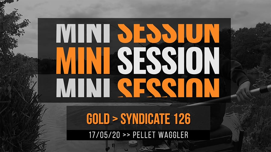 Gold Syndicate 126 – Pellet Waggler